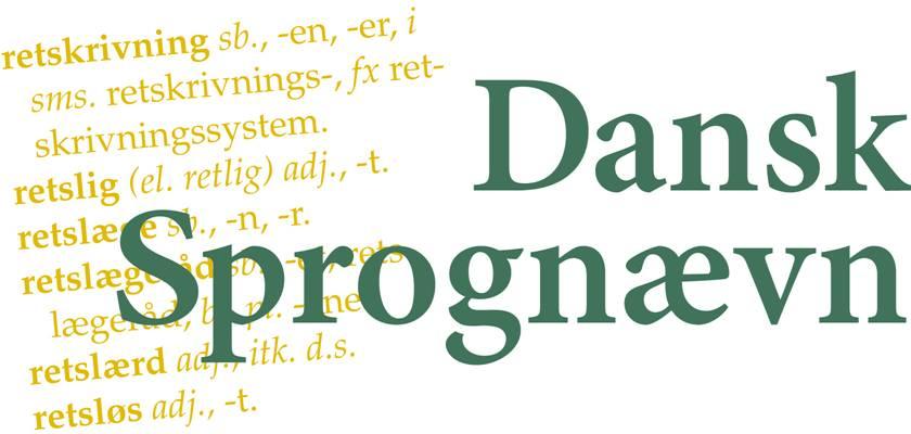 Dansk Sprognævn opfordrer til en koordineret indsats