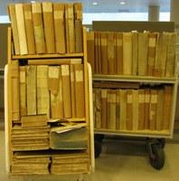 Europæisk sprogpris går til dansk bibliotek