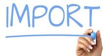 Konference om importord: Er dansk under pres?