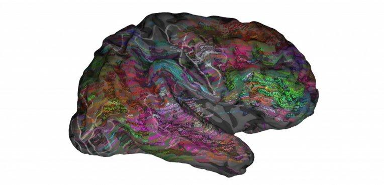 Ny forskning kortlægger hjernen