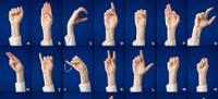 Ny håndbog om verdens tegnsprog