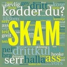 Hvad har SKAM betydet for dansk?